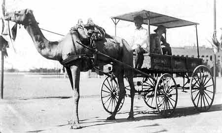 عدن عام 1906م
